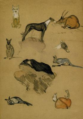 Page of Animal Subjects