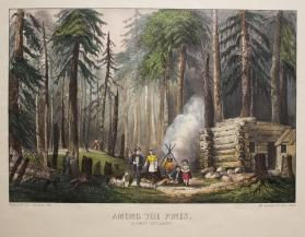 Among the Pines:  A First Settlement