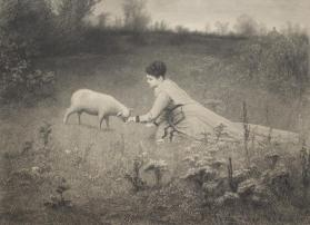 The Pet Lamb