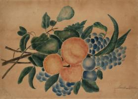 Pears, Peaches, Plums and Grapes