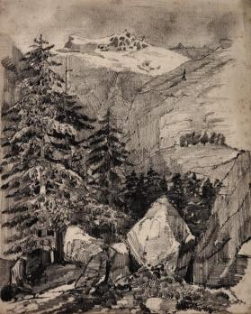 Mountains and Pine Trees