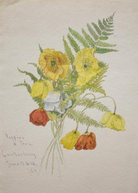 A Bouquet of Poppies and Fern