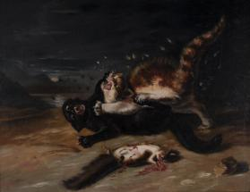 Two Cats Fighting