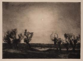 Moonlight, Kraalinge