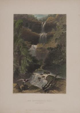 The Catterskill Fall (from Below)
