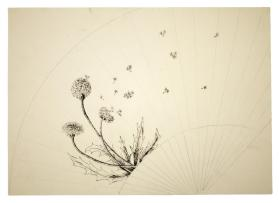 Design for a Fan Decorated with a Dandelion Motif