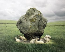 Sheep and Standing Stone, Avebury, England