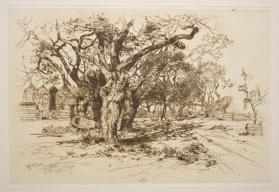 Mulford's Orchard, East Hampton