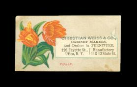 Calling Card (Christian Weiss & Co. Cabinet Makers of Utica, NY)